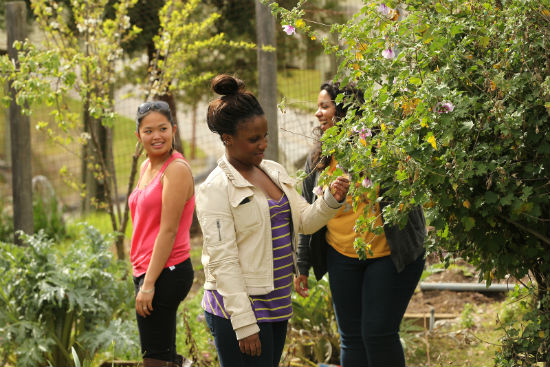 Rachel Carson College in the Garden